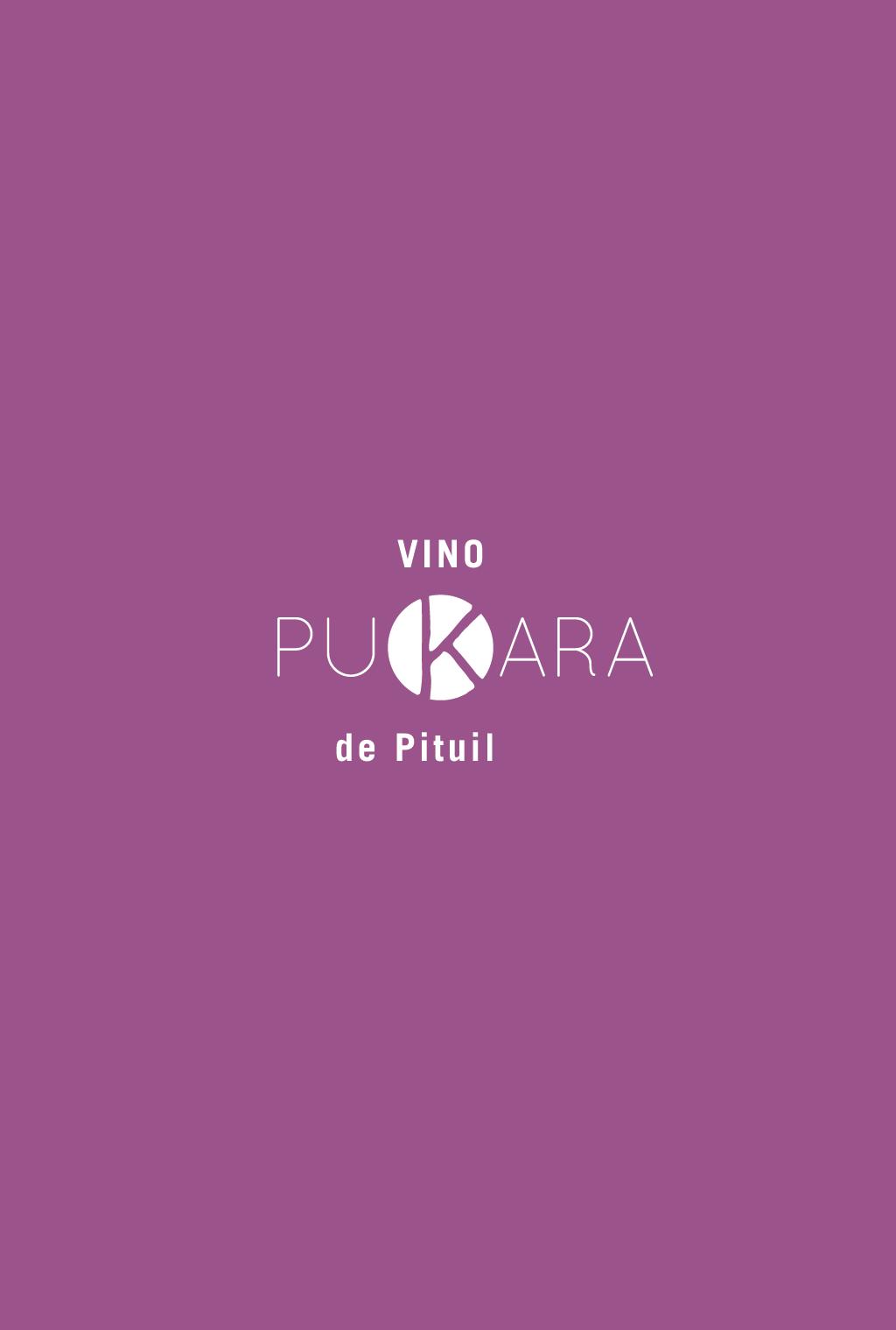 logo-negativo-color PUKARA