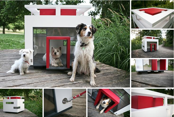Estudio Logos Casas Para Perros Cuchas Con Dise Os
